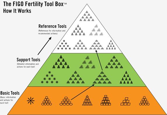 figo-tool-levels-pyramid